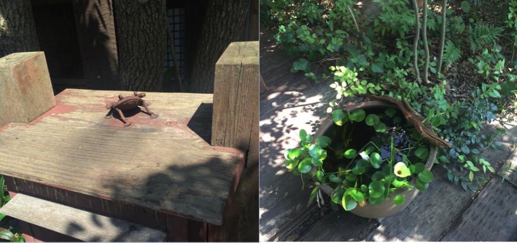 木のポストとカエルのオブジェ。玄関先の睡蓮鉢のビオトープ。(撮影=平塚桂)