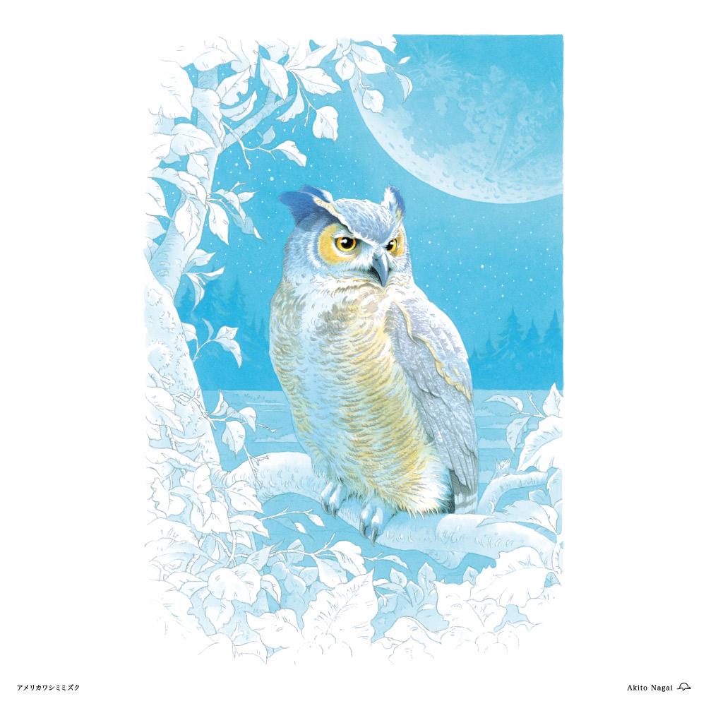 永井明人森のガードマン(フクロウと仲間達)アメリカンワシミミズク