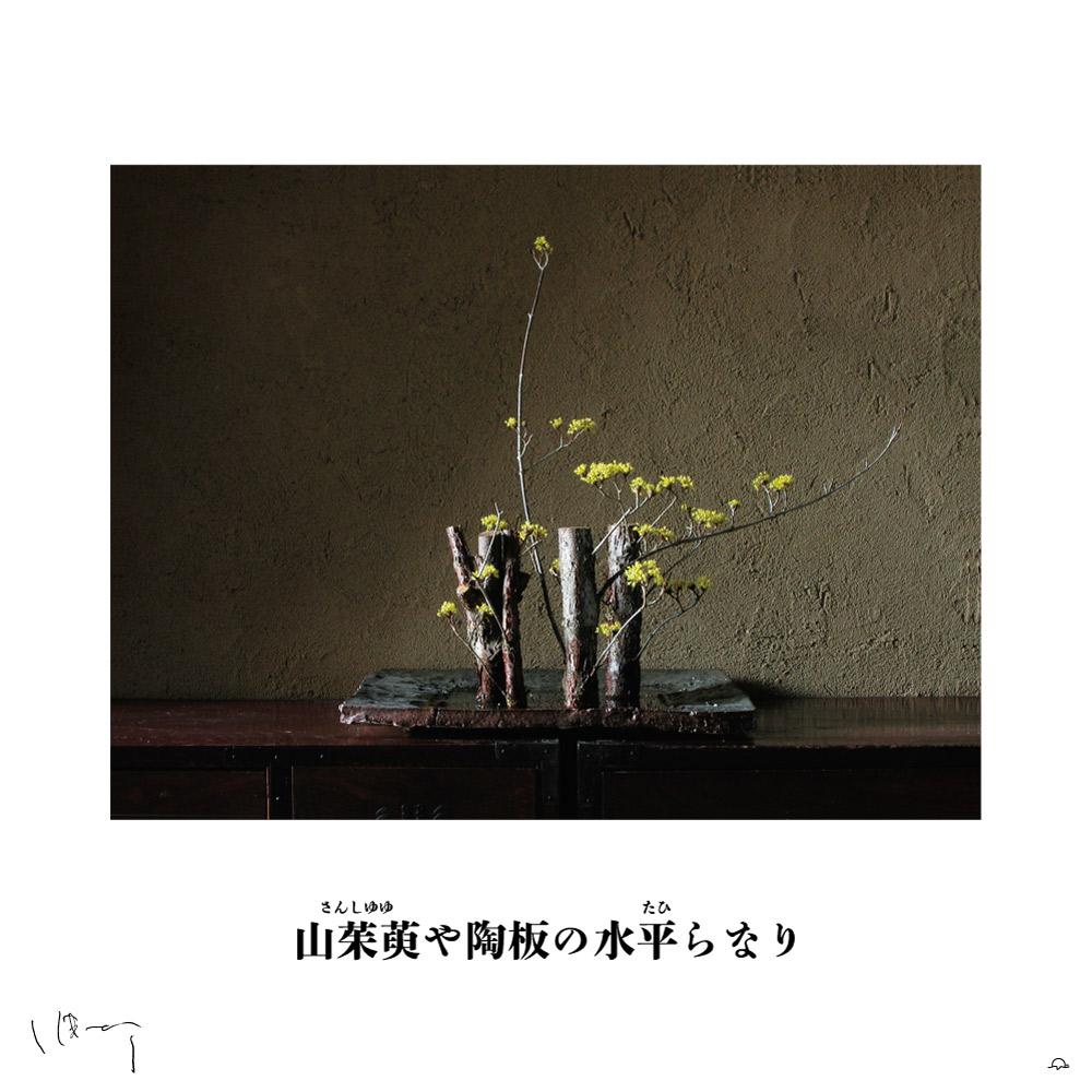 味岡伸太郎花頌抄2 2月(山茱萸)