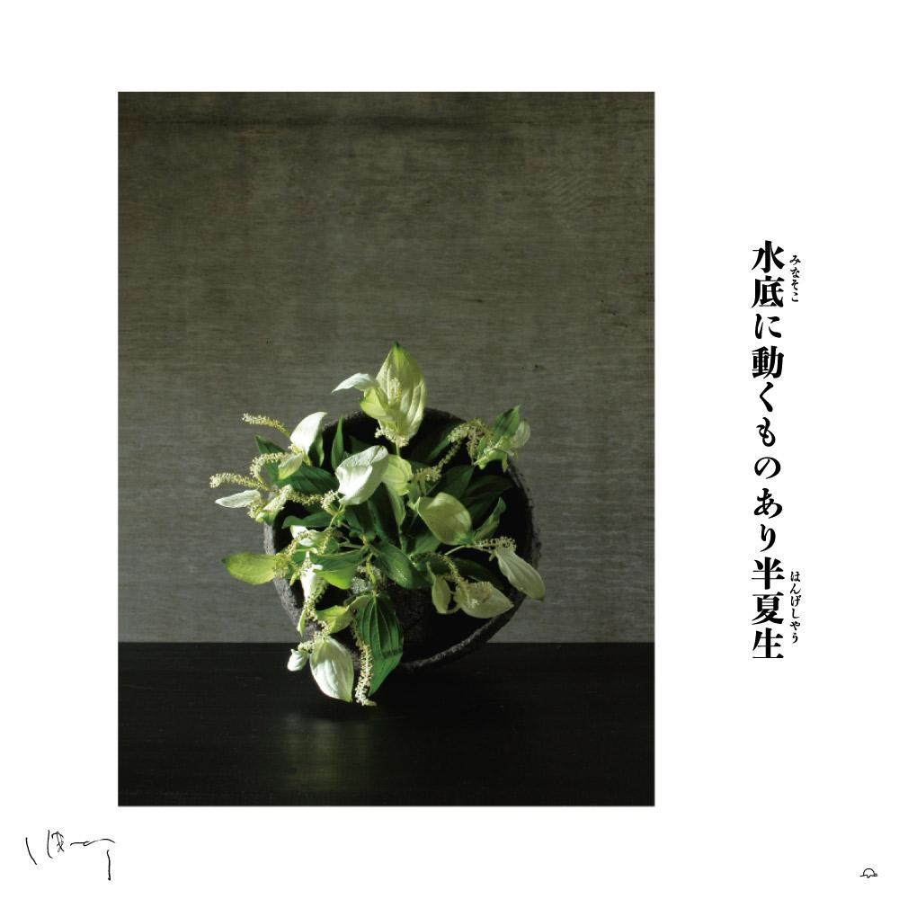 味岡伸太郎花頌抄 17月(半夏生)