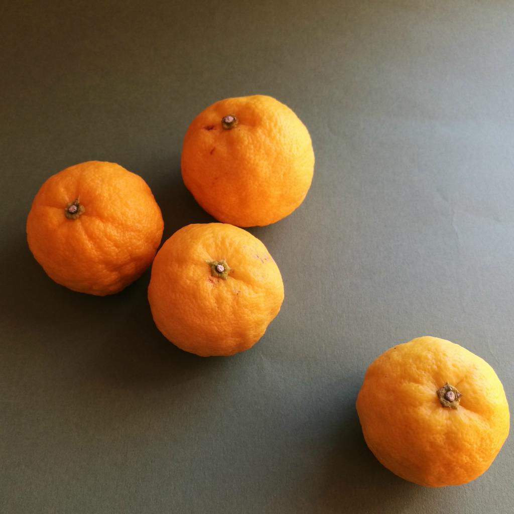 柚子へ柚子のより添ひ合つてゐる柚子湯