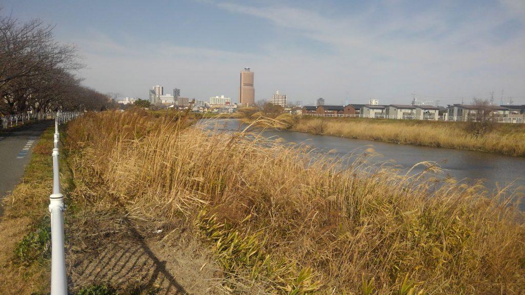馬込川とアクトタワー