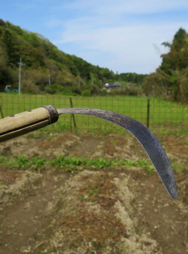 使い古して薄くなった刃を曲げた、草刈り専用のワゲガマ