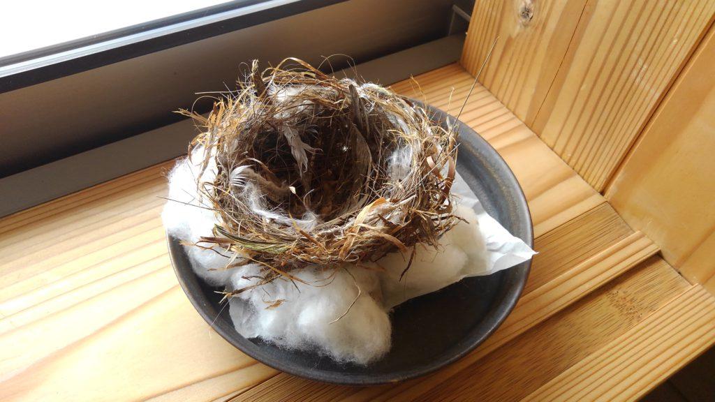 魂魄をあたためてゐる小鳥の巣
