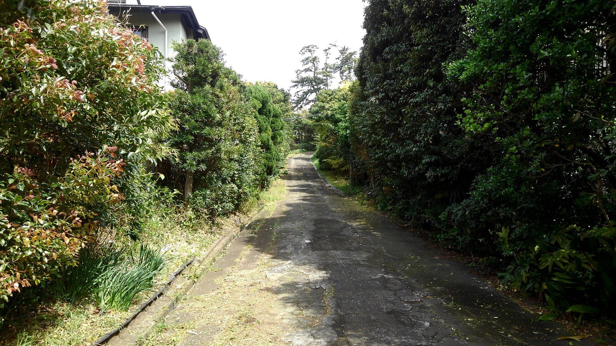 鎌倉腰越の丘、里山のある町角