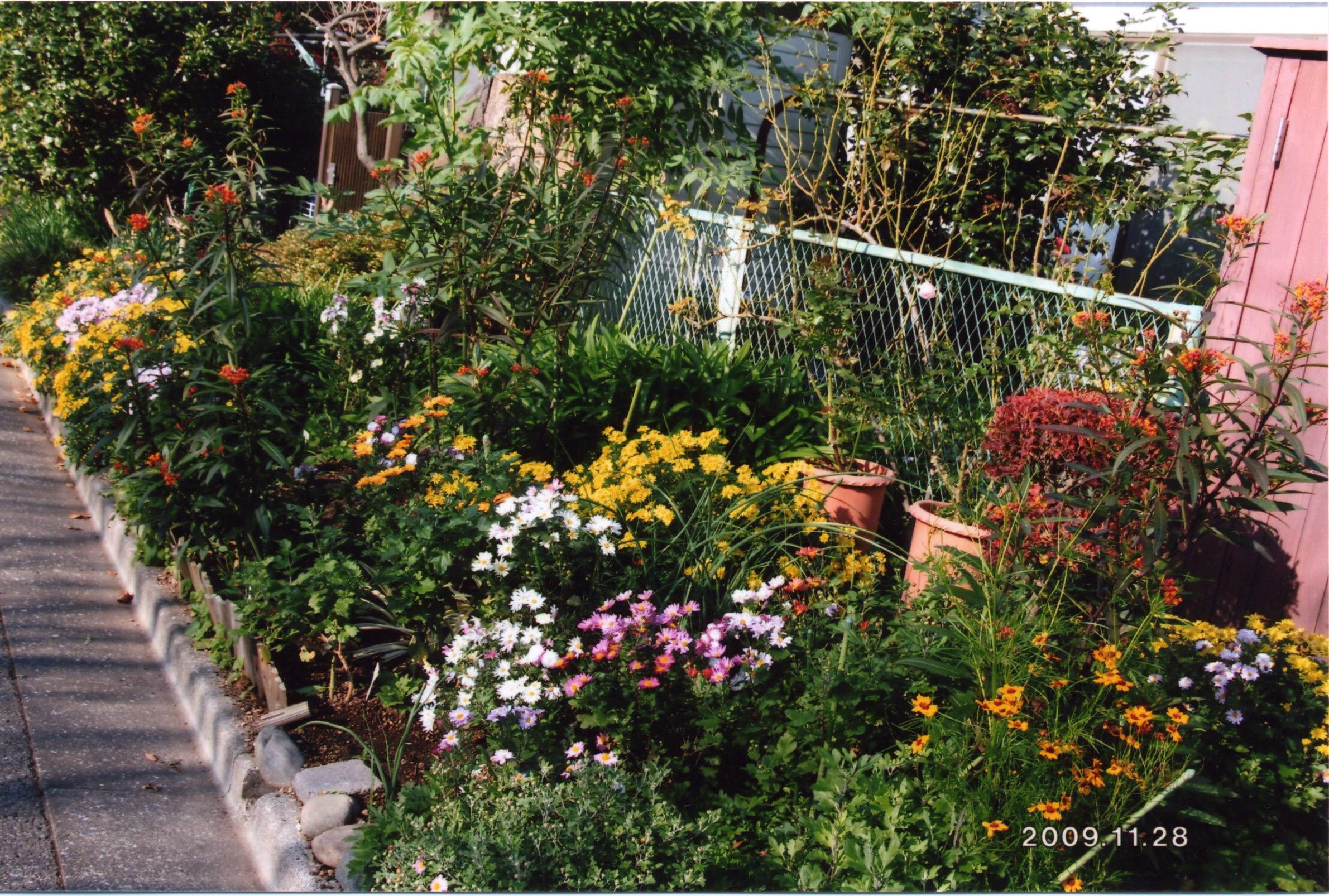 阿佐ヶ谷住宅のコモン、花壇