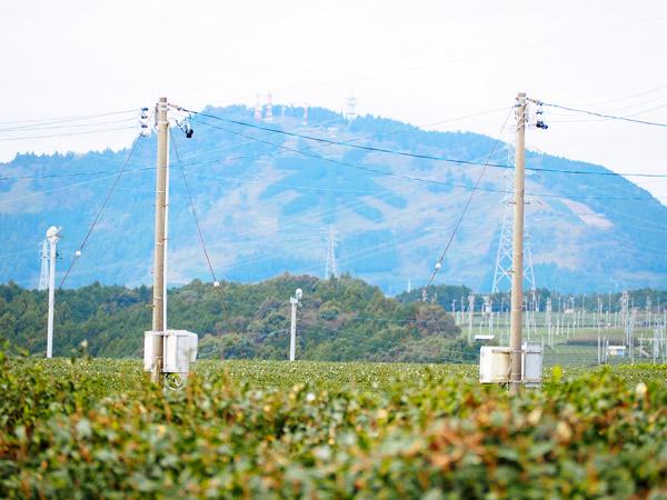 一度離れて気がついた、地域の魅力 静岡県島田市 アクトホーム