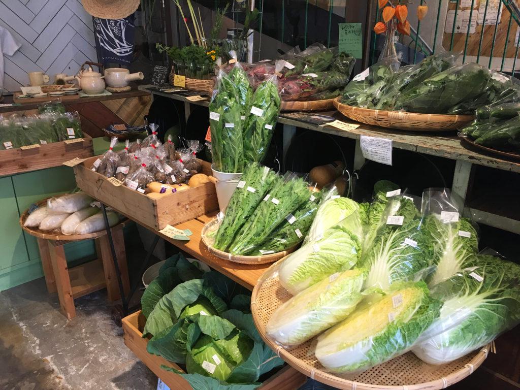 きれいに陳列された野菜たち