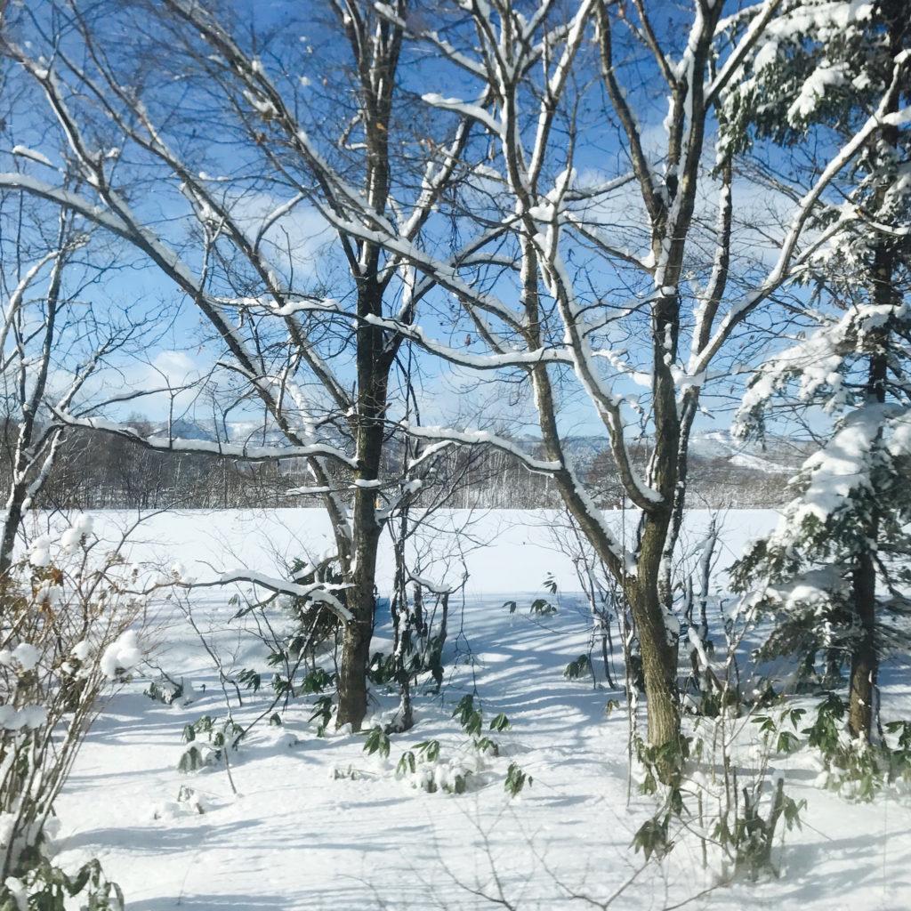 雪化粧の高原