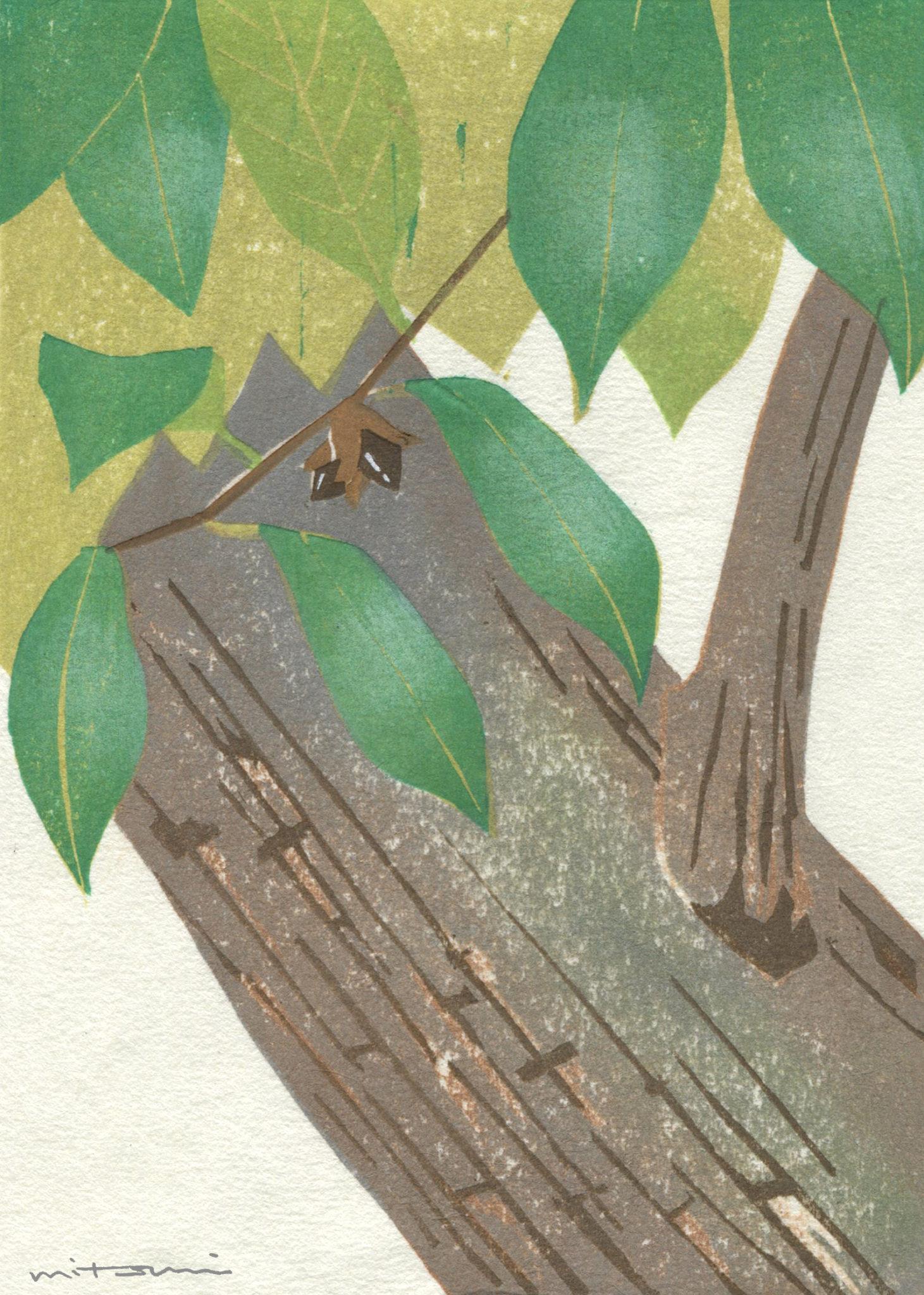 木版画が彩る世界「スダジイ」
