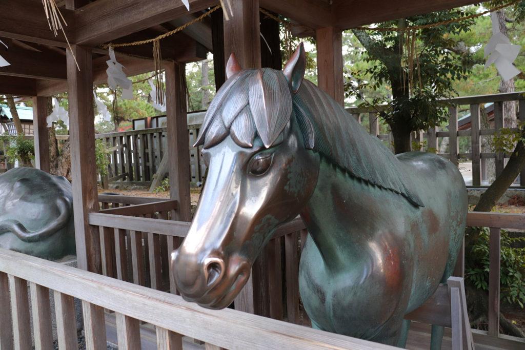 出雲大社の馬