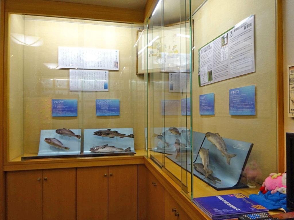 小田原かまぼこ博物館