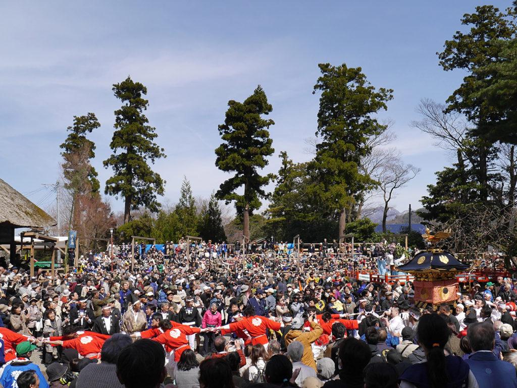 天津神社の春大祭けんか神輿