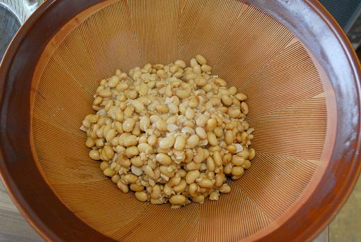潰す前の大豆