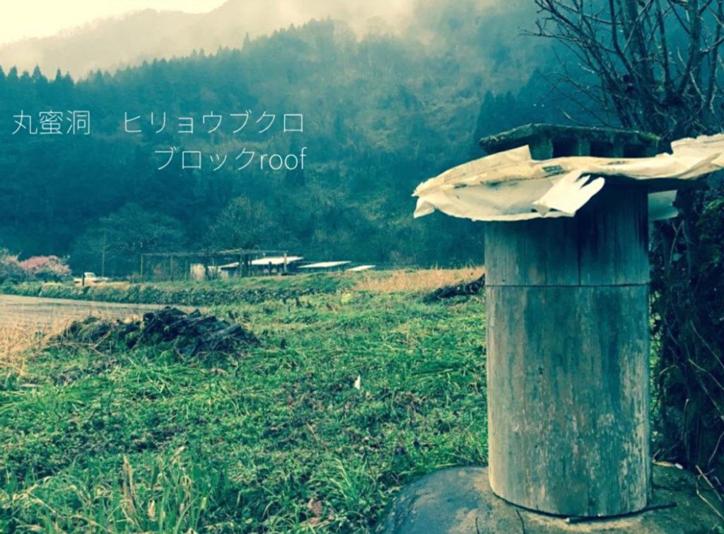 日本ミツバチの巣丸蜜洞を肥料袋とブロックで補強