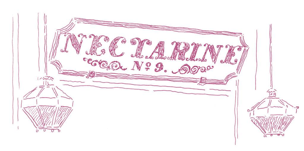 しゅんしゅん画nectarineNo.9