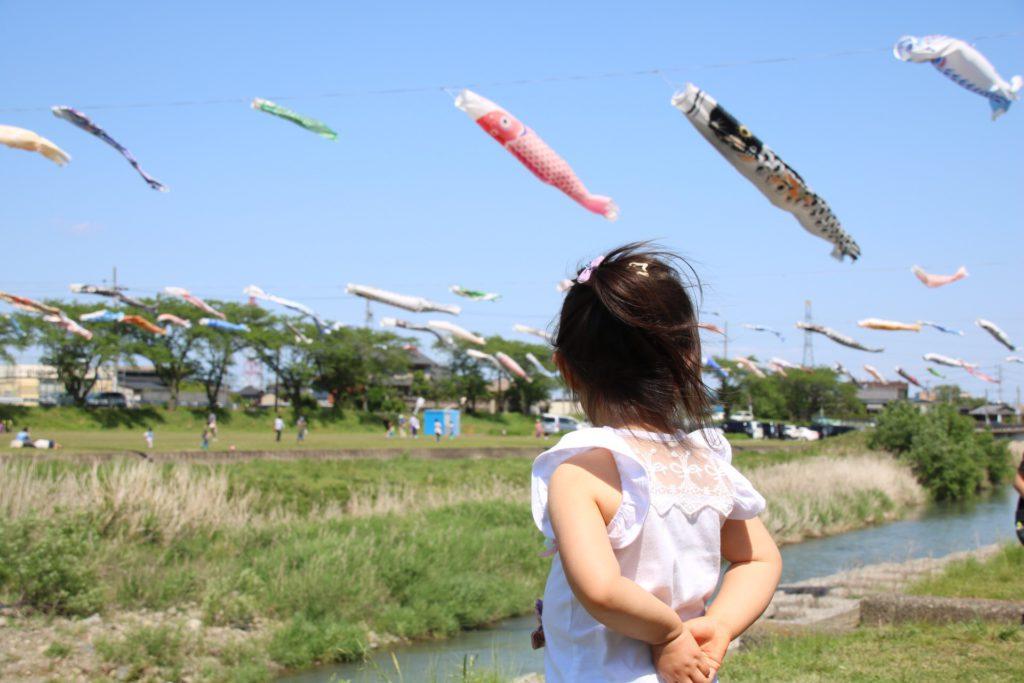 鯉のぼりを見る子供