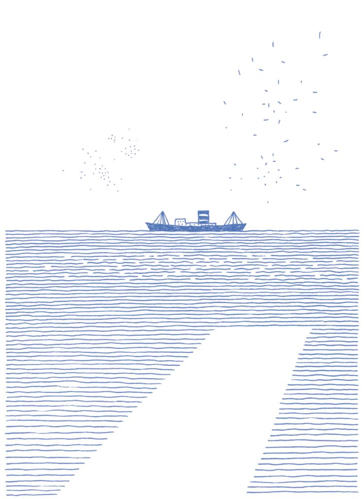 太平洋に浮かぶ旅客船