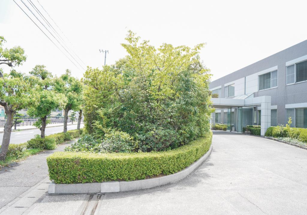 菅組の植樹after