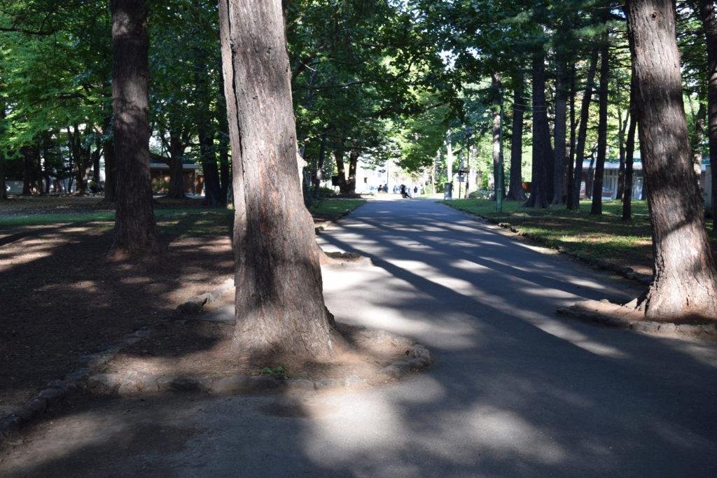 円山公園の通路