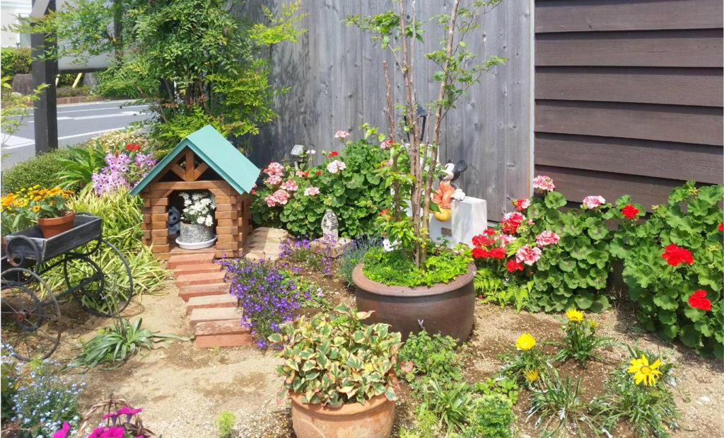 手作りの犬小屋と庭