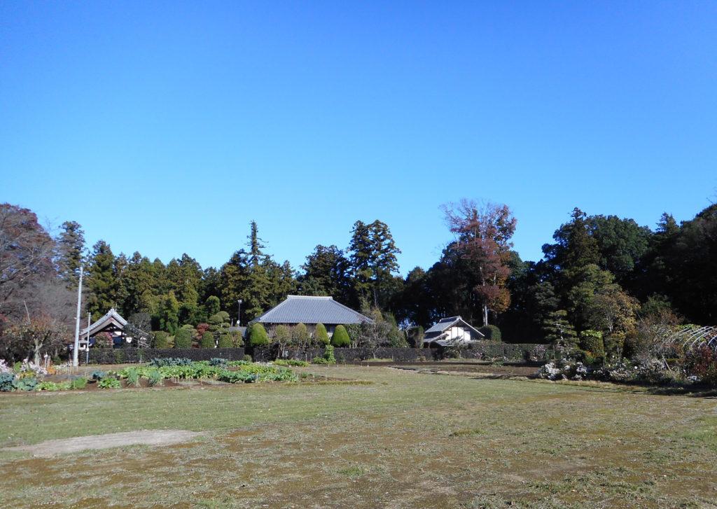 屋敷林に囲まれた住宅と畑