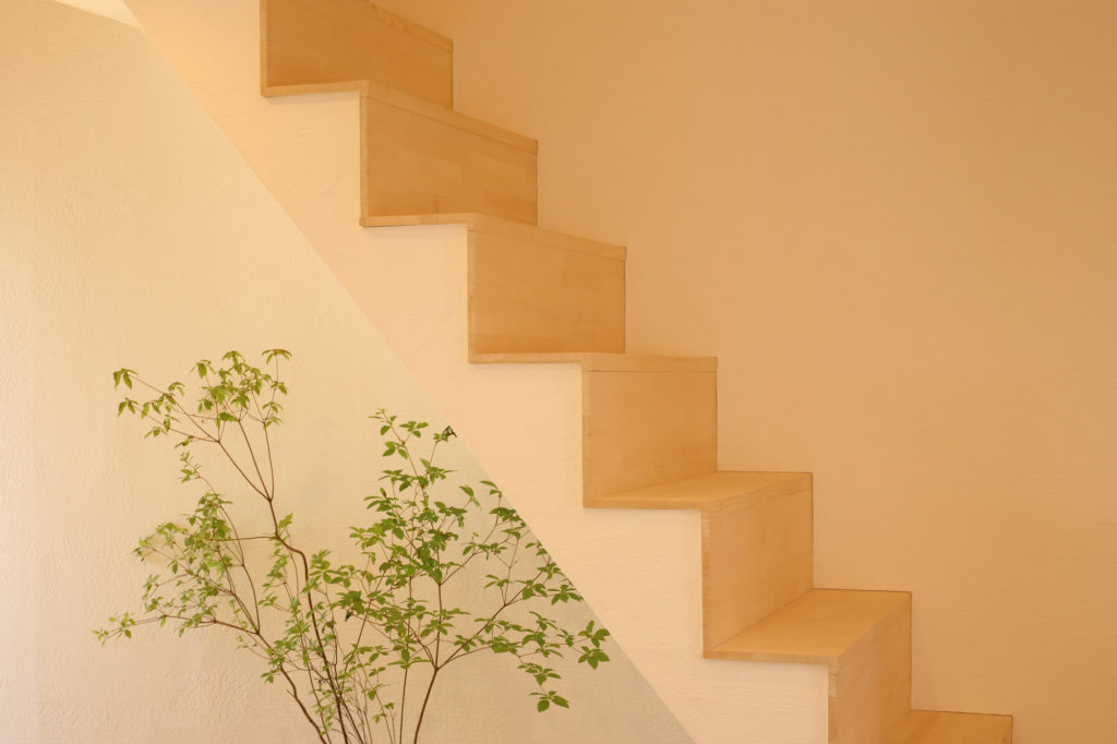 ドウダンツツジと階段
