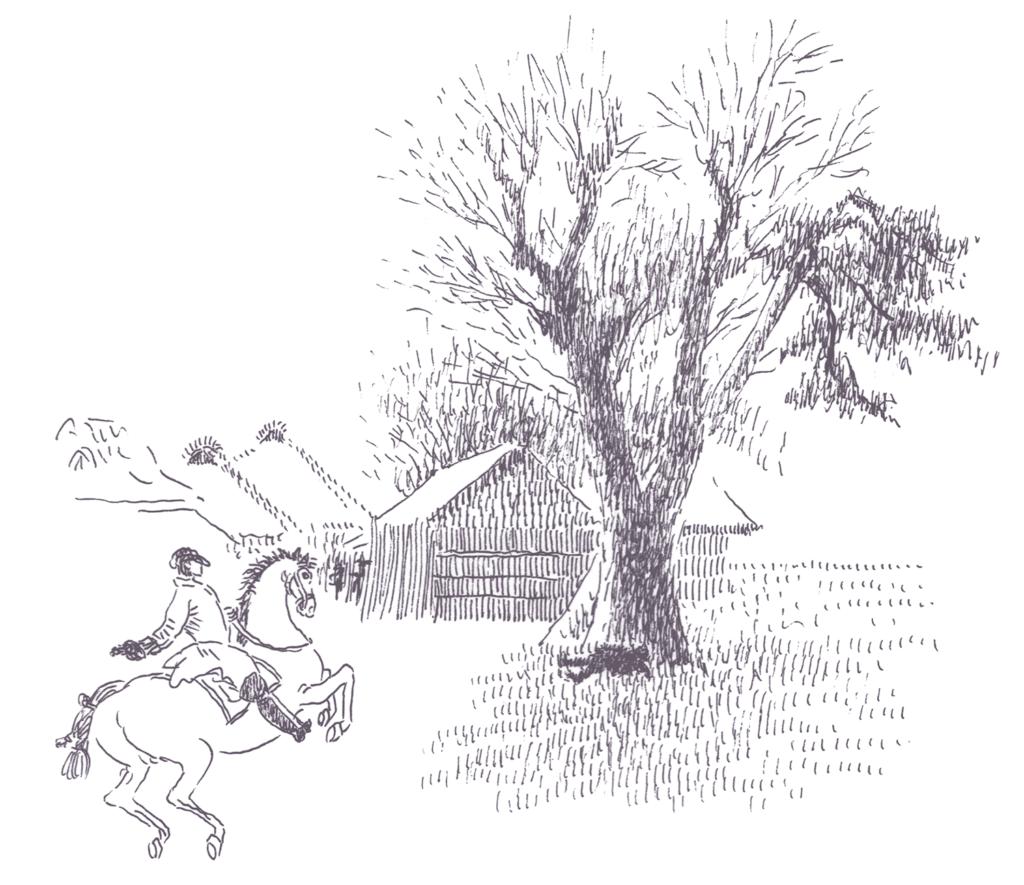 馬を走らすウィリアム・ウィリス