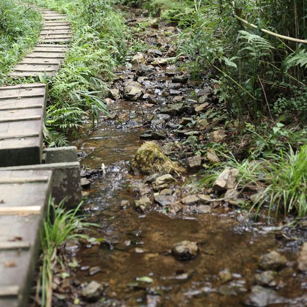 葦毛湿原の川