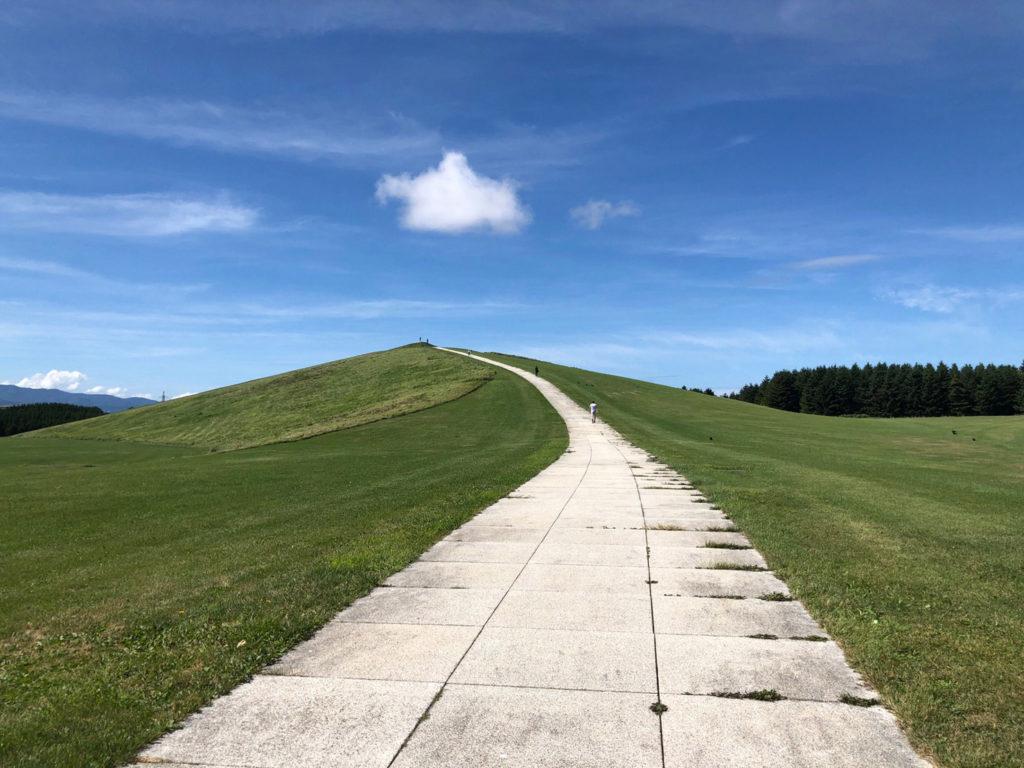 小山の頂上まで続く歩道