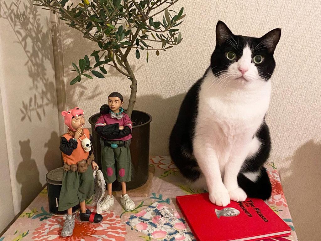 鉄コン筋クリートフィギュアとハチワレ猫