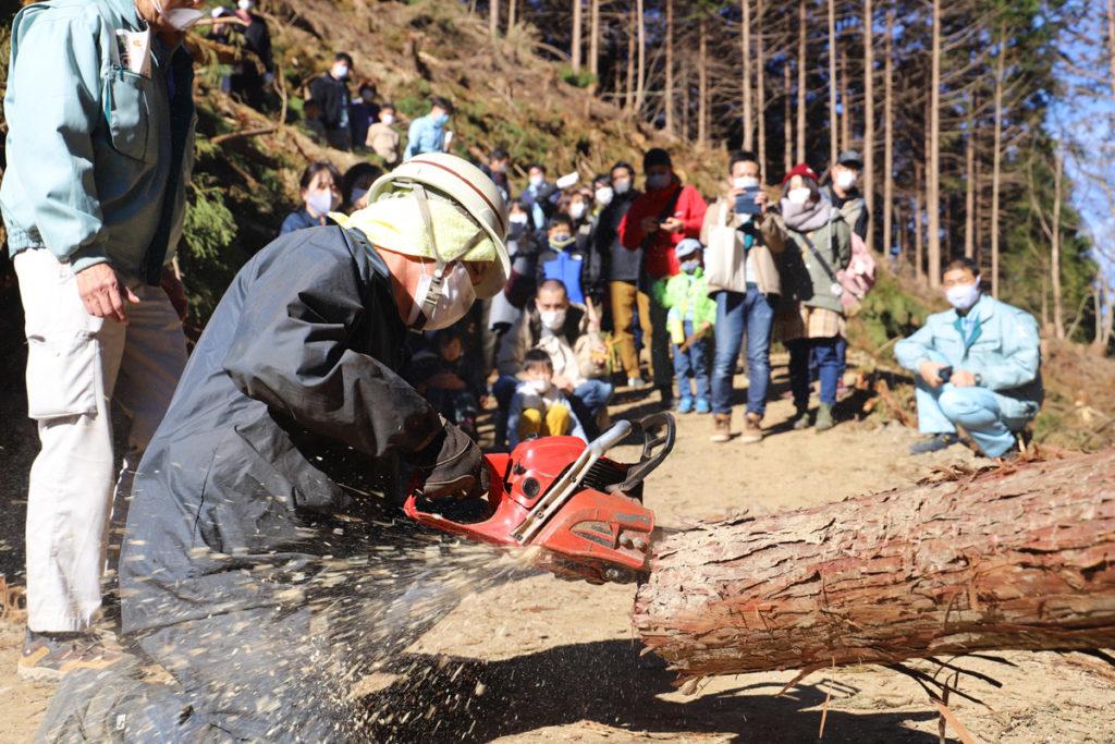 チェンソーで木を切断