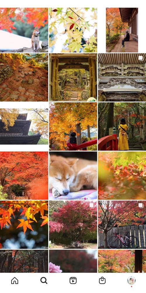 西山興隆寺のインスタ 一覧