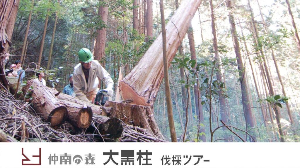 中南の森大黒柱伐採ツアー
