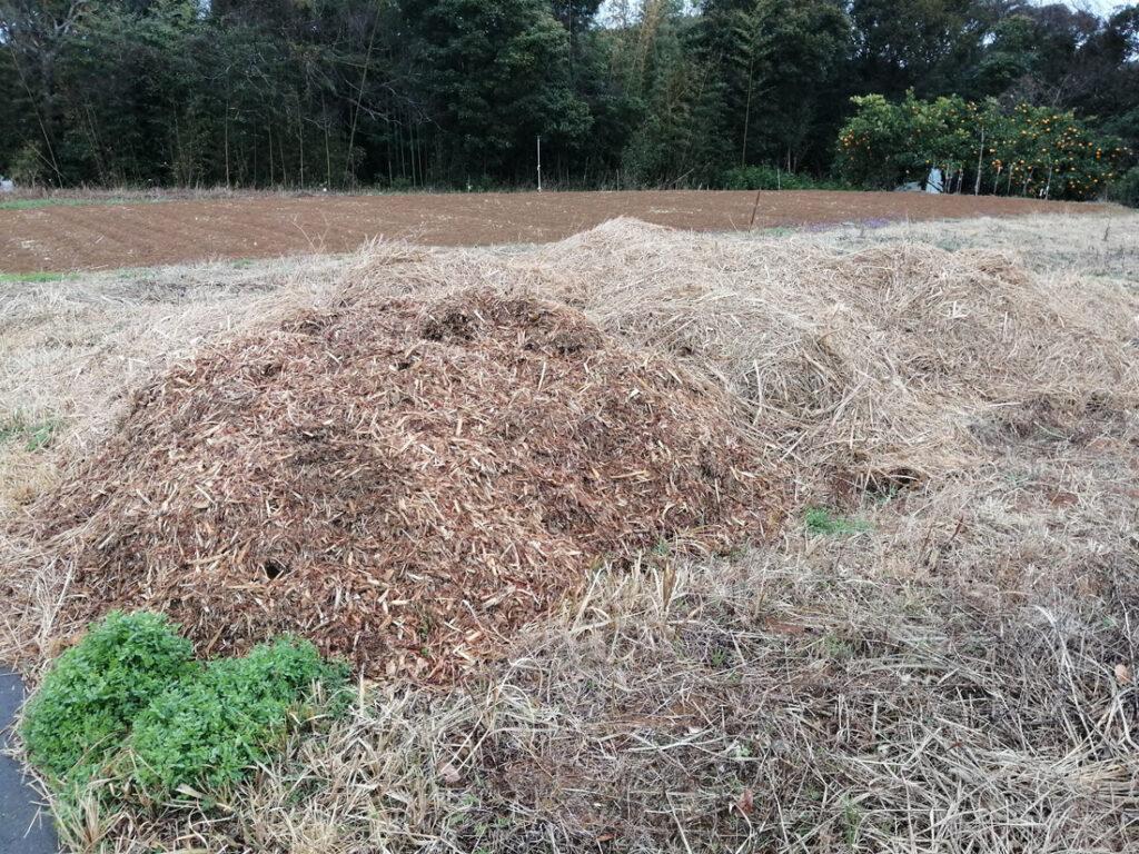 おがくずを畑に撒いて土作り中