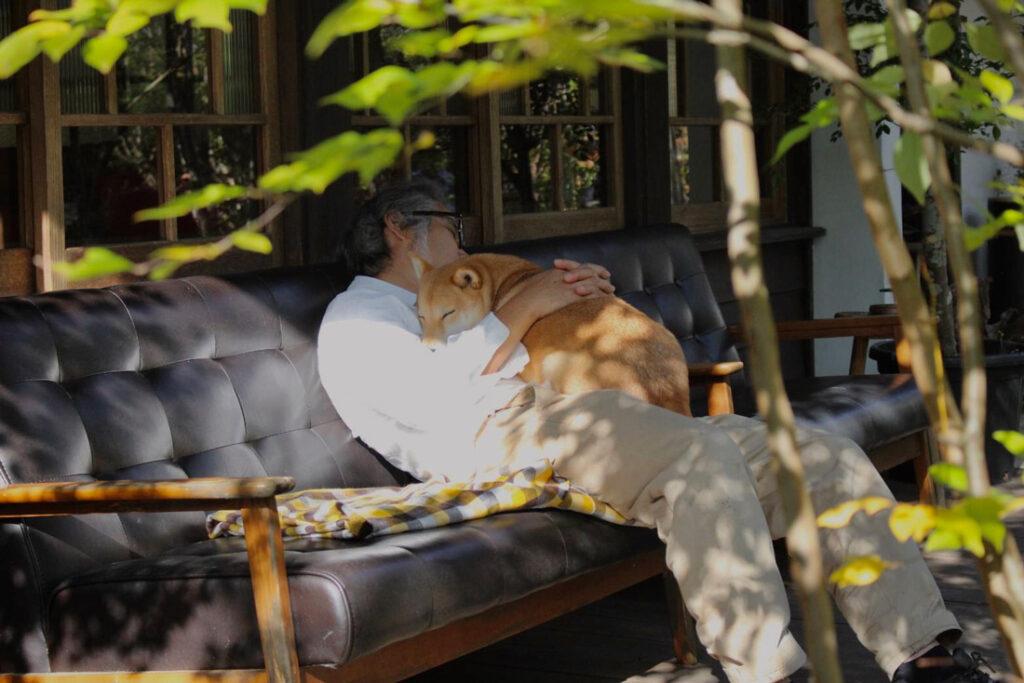 保護犬抱っこして昼寝