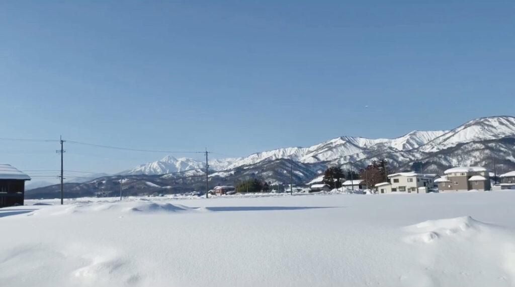 新潟県上越市の一面真っ白な雪景色