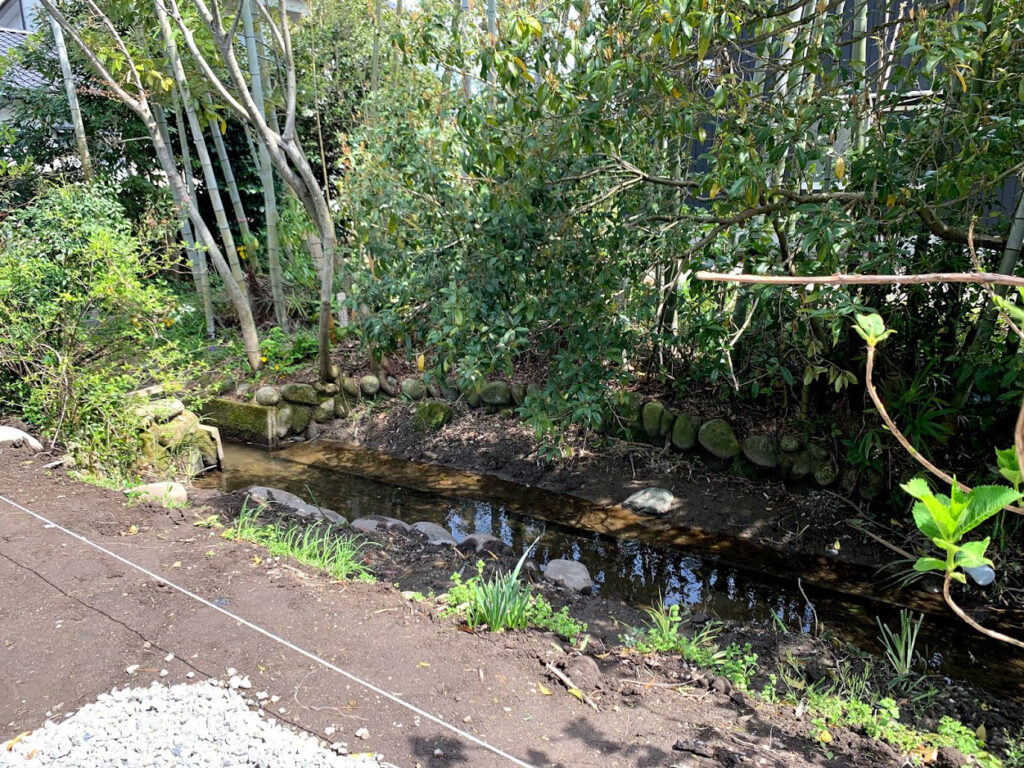 小川と竹林