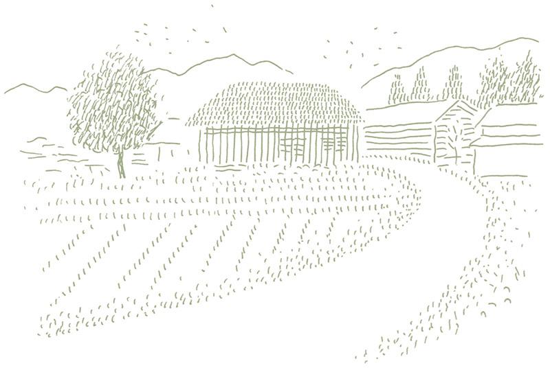 仙太郎の田舎風景(回想)